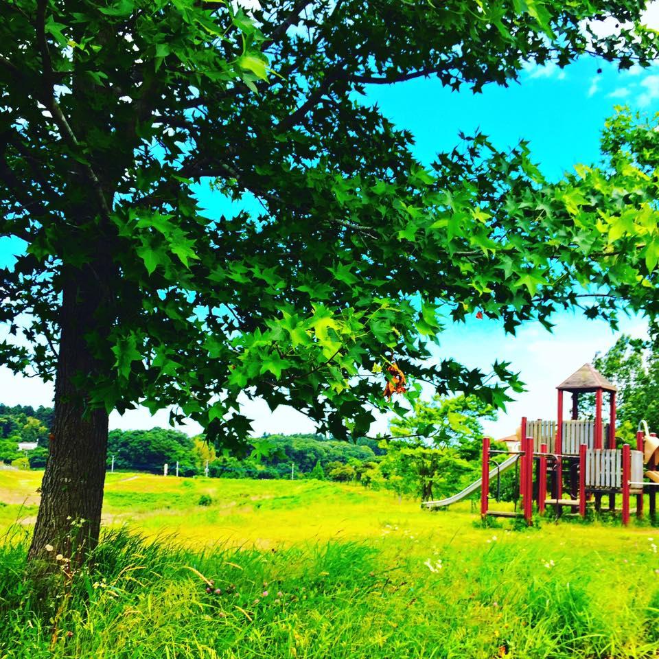 東海村 四季の森公園