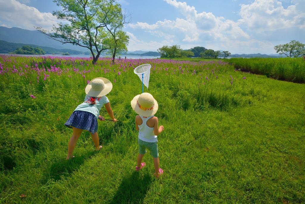 花畑で遊ぶ2人 C