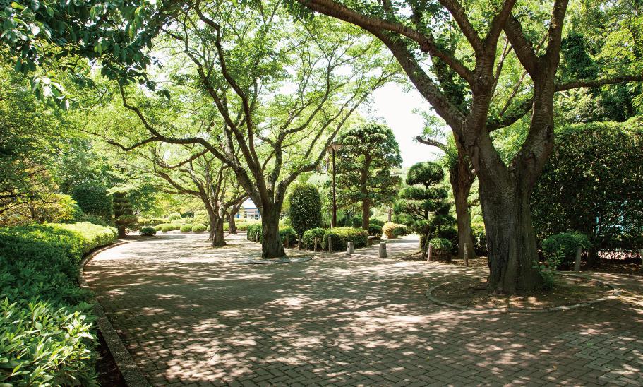 阿漕ヶ浦公園